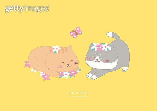 봄과 고양이