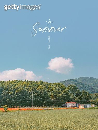 여름 풍경