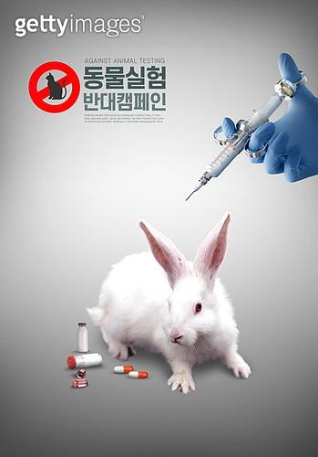 동물 실험 반대