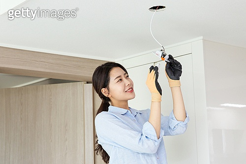 집안 전기
