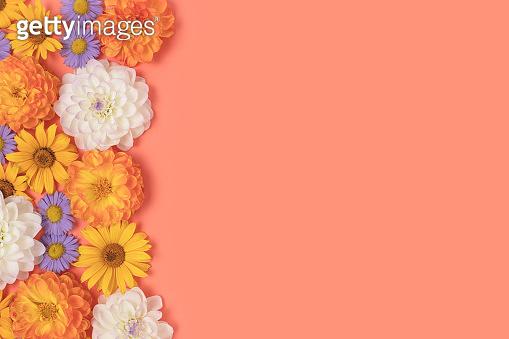 봄 꽃 배너 백그라운드