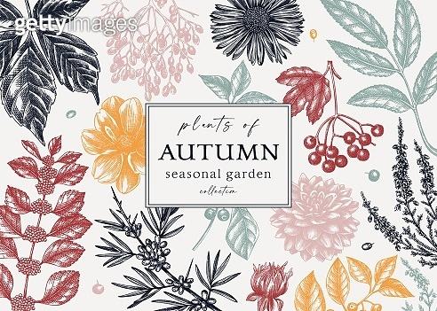 가을 식물 손 그림