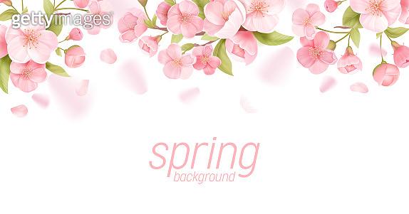 봄 플라워 템플릿