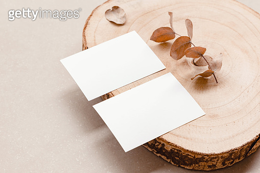 카드 목업