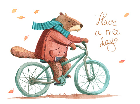 Watercolor illustration. Beaver in coat and scarf riding a bicycle