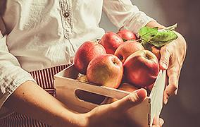 가을 제철음식 - 사과