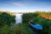 Hidden Boat
