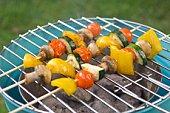 Shish-ka-bobs grilling outdoors