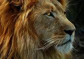 Fractal Lion XL