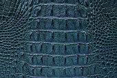 freshwater crocodile bone skin texture.