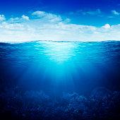 coral reef underwater up down waterline
