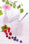 Fresh yogurt in plastic container