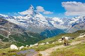 Panorama view of the Matterhorn - Zermatt, Switzerland
