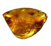 Mineral amber on a white background