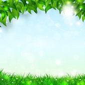 Spring Holiday Background