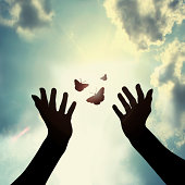 Hand with butterfly in sky