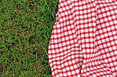 checkered plaid for picnic on green grass