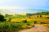 Landscape of a beautiful countryside.