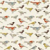 Cute birds in vector. Seamless illustration.