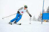 Giant slalom race - Snow Skiing