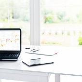 Laptop on desk in front of big window, garden view