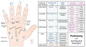 Palmistry Astrology Basic Analogies Chart