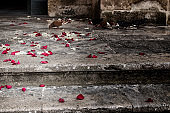rose petals and rice grains on a staircase