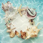 Blue background with seashells