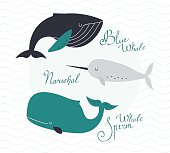 Awesome whales on wavy background