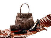 crocodile leather fashion products