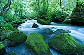 Japanese Mountain Stream