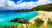Oahu, Hawaii, Tropical paradise
