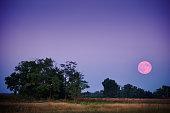 Full moon over field