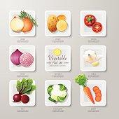 Infographic food vegetables flat lay idea. Vector illustration