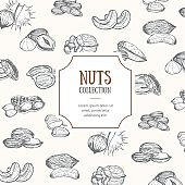 Nuts Package Design. Vector
