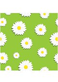 Cute seamless pattern with white chamomiles flowers on grass background
