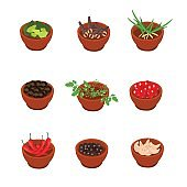 Isometric cartoon style flavorful spices, condiments icon. Vector illustration. White