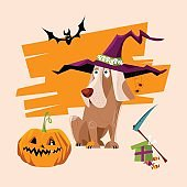 Dog wearing witch hat with ghost and pumpkin. Halloween style.