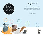 Animal banner with Dog for web design 2