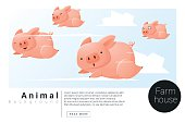 Animal banner with Pigs for web design 2
