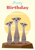 Birthday and invitation card animal background with meerkat
