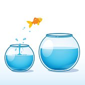 Goldfish making leap of faith to a bigger fishbowl