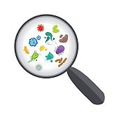 Bacteria and virus under magnifying glass