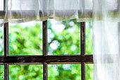 Window of the terrace