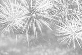 Silver fireworks background.