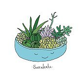 Cartoon cute succulents in pot.