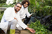 Happy male scientists inspecting plants