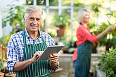 Senior man using digital tablet while woman working at greenhouse