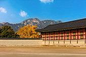 Gyeongbokgung Palace in Seoul,South Korea.