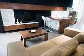 Modern Living Room Interior in Luxury Apartment